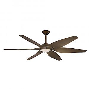 Mornington Fan