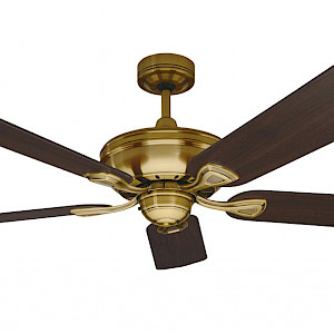 Healey Fan
