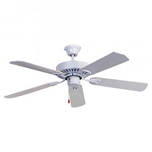 Hayman Fan